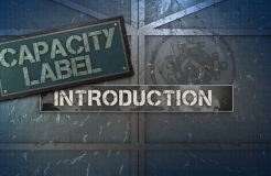 1.Capacity Label - Introduction